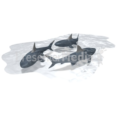Pool Of Sharks Presentation clipart