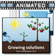 ID# 15394 Growing Solutions PowerPoint Template