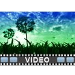 Spring Evening Video Background