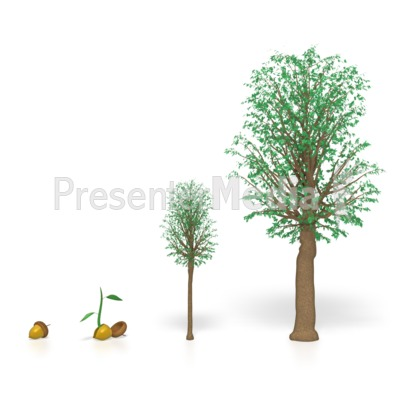 Tree Growing  Presentation clipart