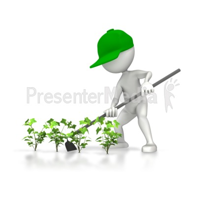 Farmer Hoeing Plants Presentation clipart