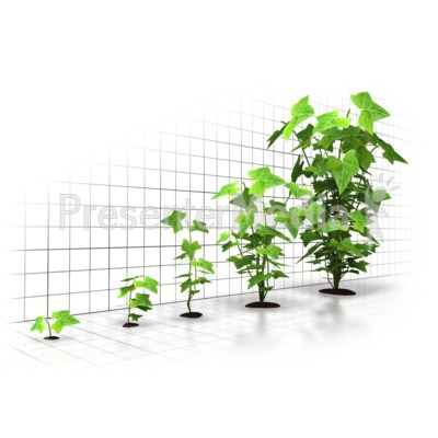 Organic Growth Graph Presentation clipart