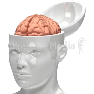 Brain Inside Head Presentation clipart