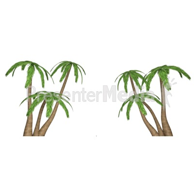 Palm Tree Clusters Presentation clipart