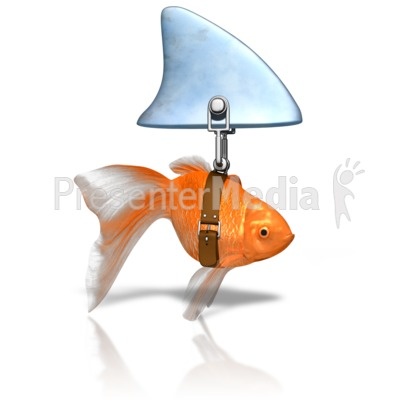 Clever Goldfish Shark Presentation clipart