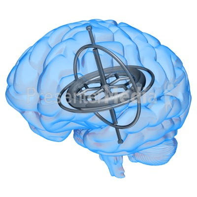 Brain Gyroscope Presentation clipart