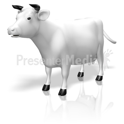 Cow Presentation clipart