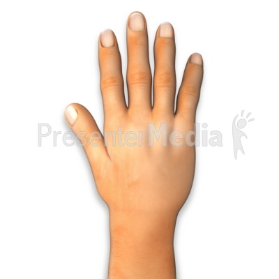 Back of Hand Presentation clipart