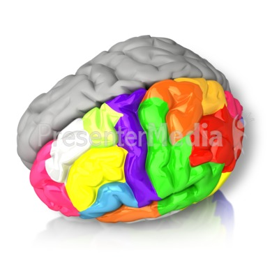 Left Brained Color Presentation clipart
