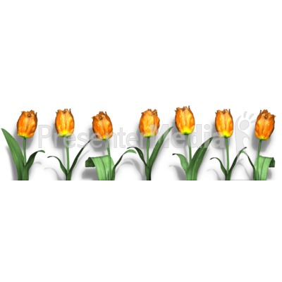 Row Of Flowers Presentation clipart
