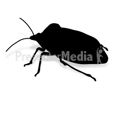Stink Bug Presentation clipart