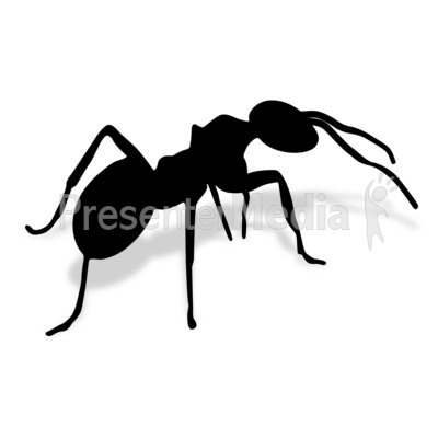 Ant Presentation clipart