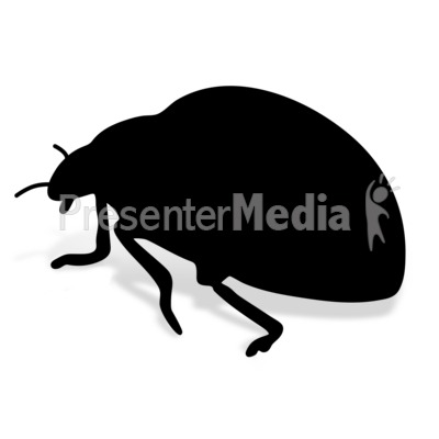 Lady Bug Presentation clipart