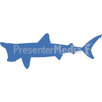 Basking Shark Silhouette  Presentation clipart