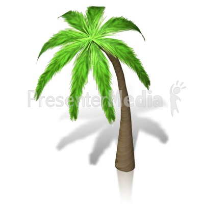 Palm Tree Isometric Presentation clipart