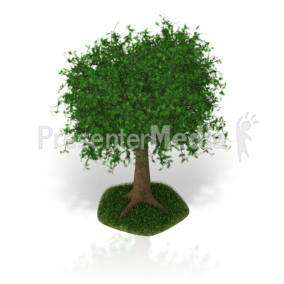 Lush Tree Presentation clipart