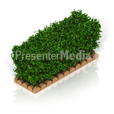Hedge Presentation clipart
