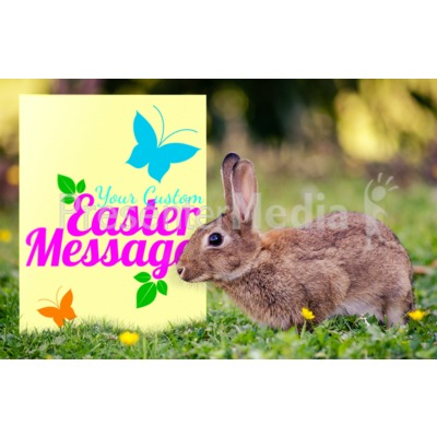 Easter Bunny Sign Presentation clipart