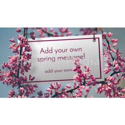 Apple Blossoms Sign Presentation clipart