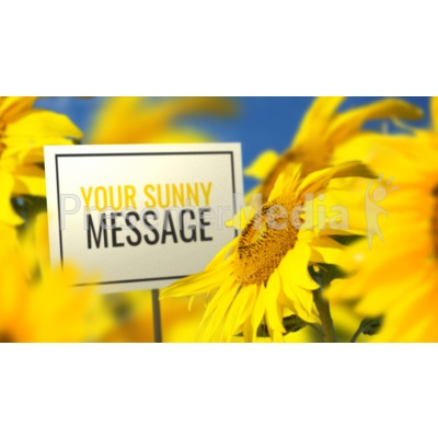 Sunflower And Sign Presentation clipart