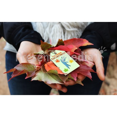 Fall Handful Custom Presentation clipart