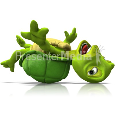 Turtle Stuck Flipped Over Presentation clipart